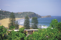 Central Coast - Avoca Beach